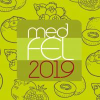 MEDFEL 2019