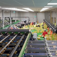 Mpac additional kiwifruit cold store