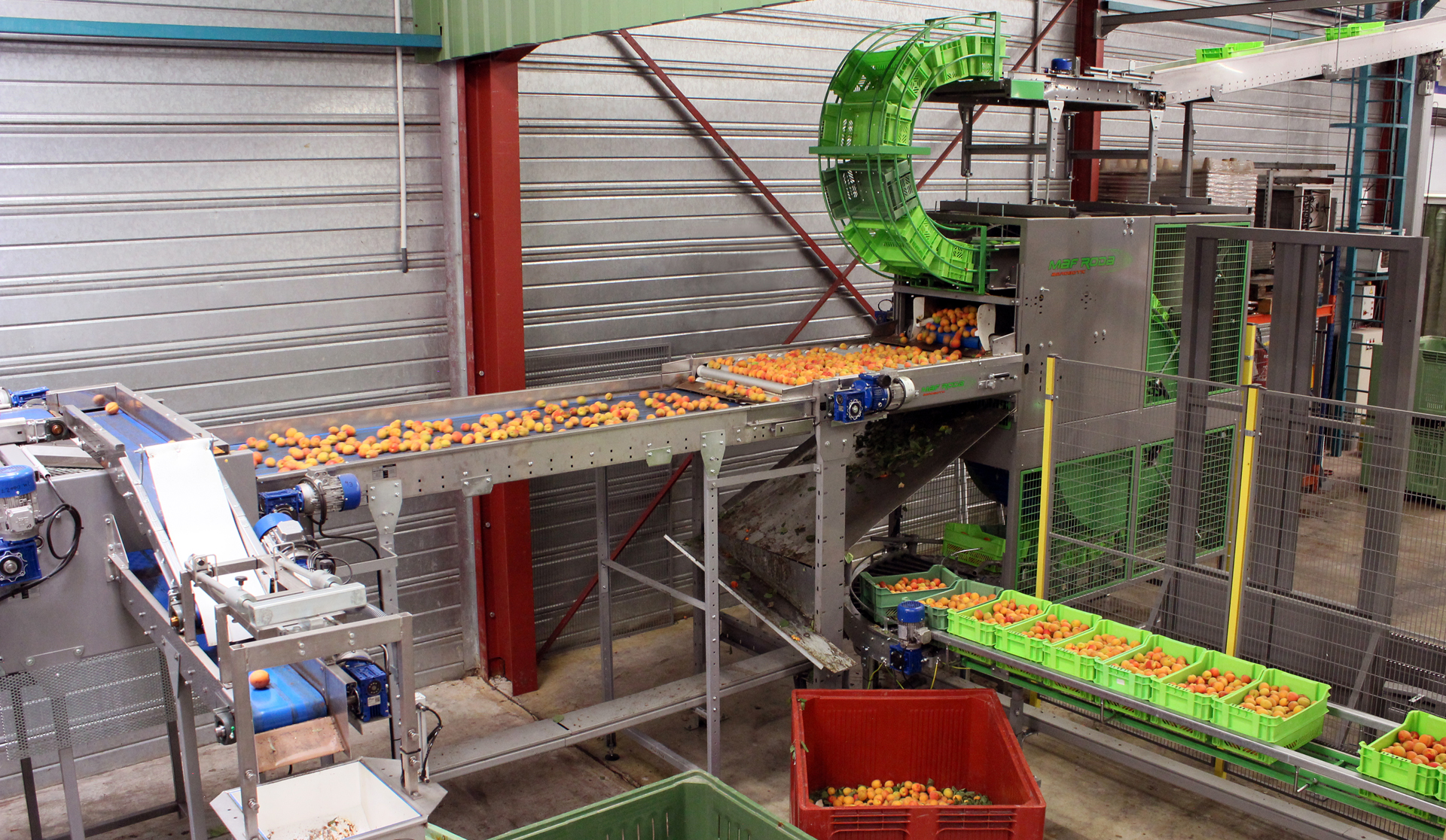 VALSOLEIL (France) - Continuous crate discharger - Apricot