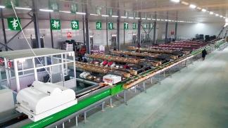 YUMMY SUNCO - Ligne emballage pommes