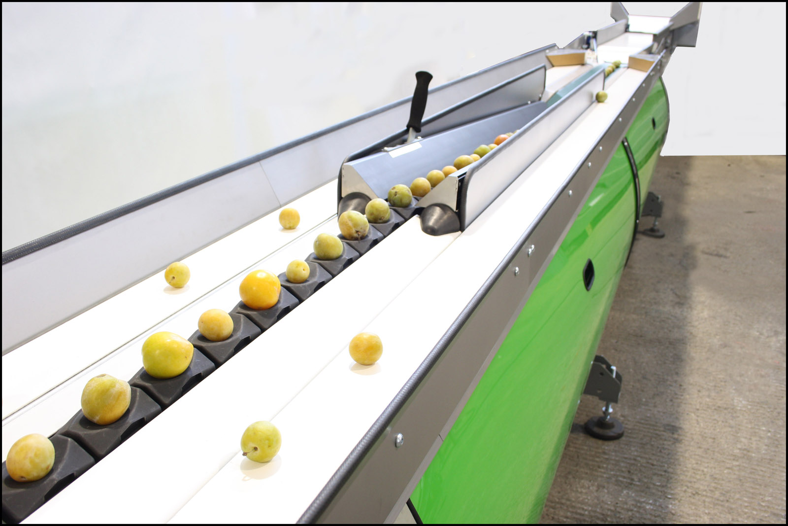 Grading of fruits with complex shapes - FREEWAY P-90