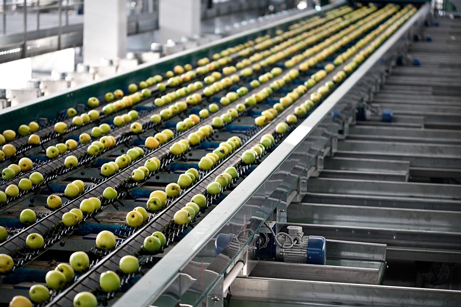 Calibración de frutas - POMONE