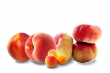 Fruits d'été - Fruits à noyau