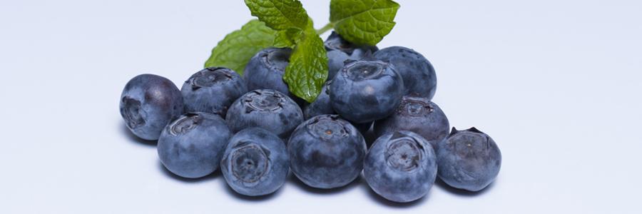 Panoramique fruits-myrtilles