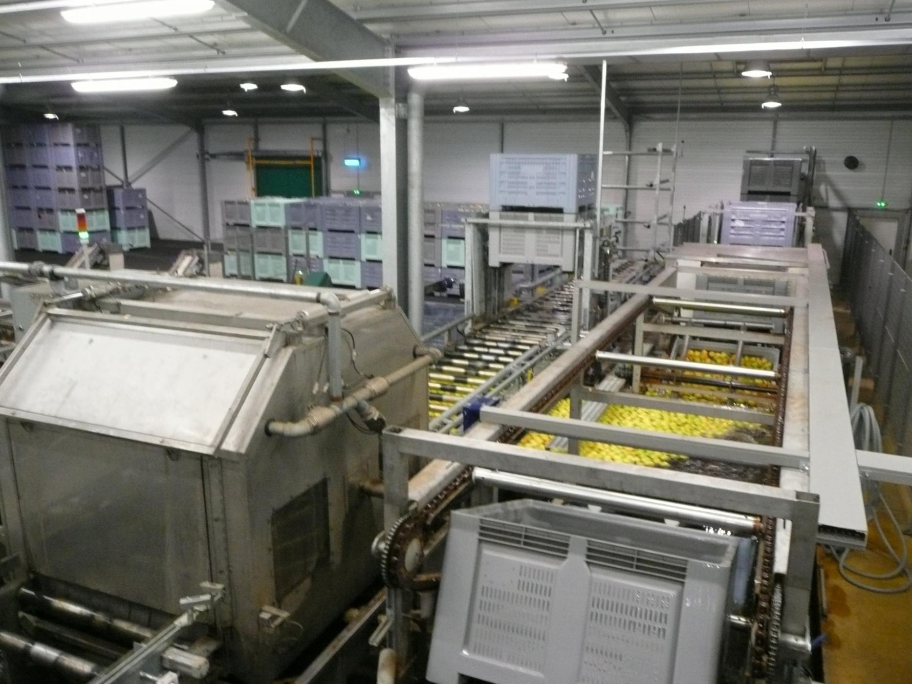 PERLIM - Précalibrage Pommes - Alimentation dans l'eau
